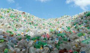 Estrogenic plastic pollution