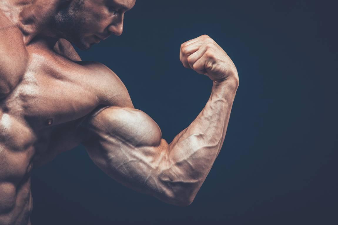 TRT-booster-calgary_Biceps (2)
